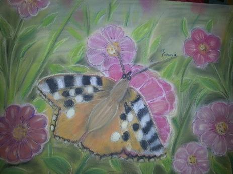 فراشة Butterfly
