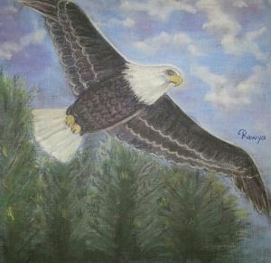 النسر Falcon